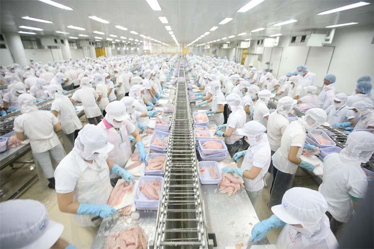 Đơn hàng chế biến thực phẩm xkld Nhật Bản