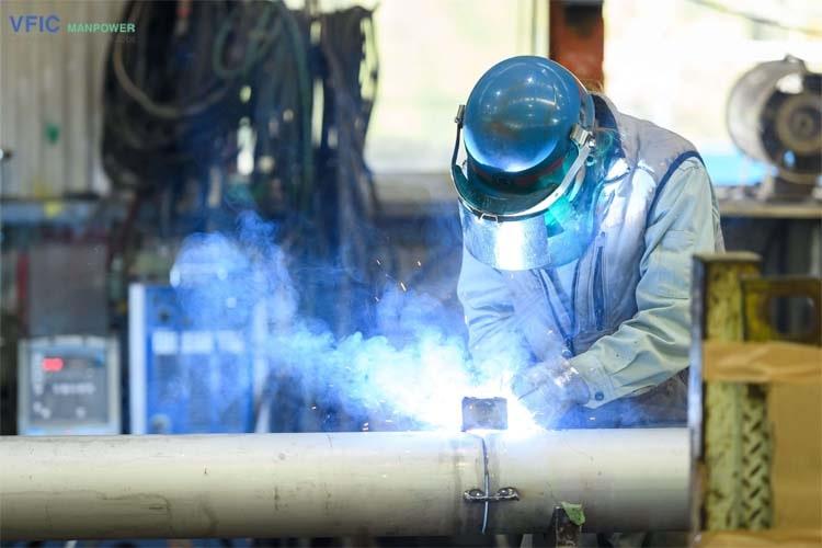 Đơn hàng hàn lắp đường ống xuất khẩu lao động Nhật Bản